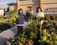 第5回 両手いっぱい秋冬野菜を収穫