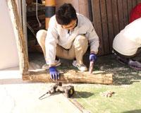 第6回 本格的な原木栽培に挑戦