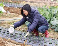 第5回 肥料の知識を身につける