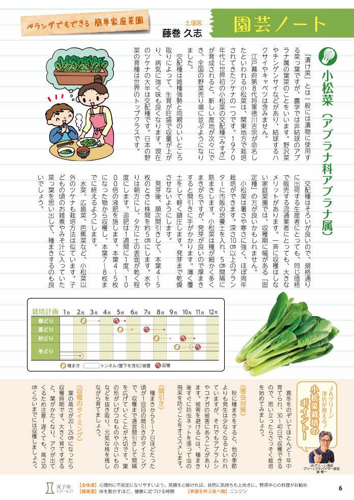 小松菜、タマネギ